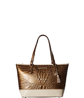 Brahmin - Medium Asher