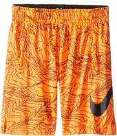 Nike Kids - Dry Aop Fly Shorts (Toddler)