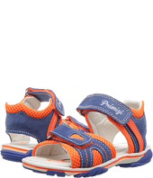 Primigi Kids - PSS 7082 (Toddler/Little Kid)