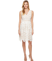 Maggy London - Vine Flower Lace Fit and Flare Dress