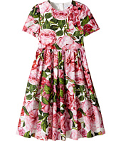 Dolce & Gabbana Kids - Rose Poplin Short Sleeve Dress (Big Kids)