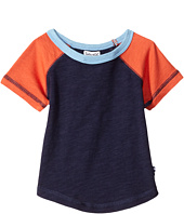Splendid Littles - Always Short Sleeve Raglan (Infant)