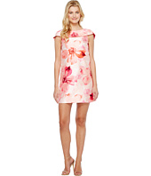 Tahari by ASL - Floral Print A-Line Dress