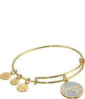 Alex and Ani - Color Infusion - Because I Love You Bangle