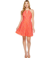 Adelyn Rae - Renee Lace Fit and Flare Dress