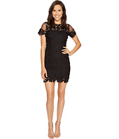 ROMEO & JULIET COUTURE - Short Sleeve Mesh Lace Dress