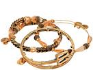 Trident Metal Wrap Bracelet Set of 3