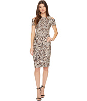 Calvin Klein - Cold Shoulder Animal Print Sheath CD7C814R